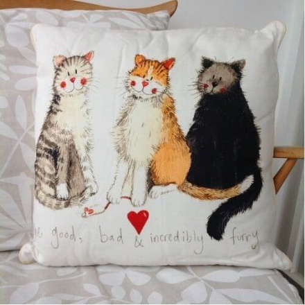 The Good, Bad & Incredibly Furry Cushion By Alex Clark